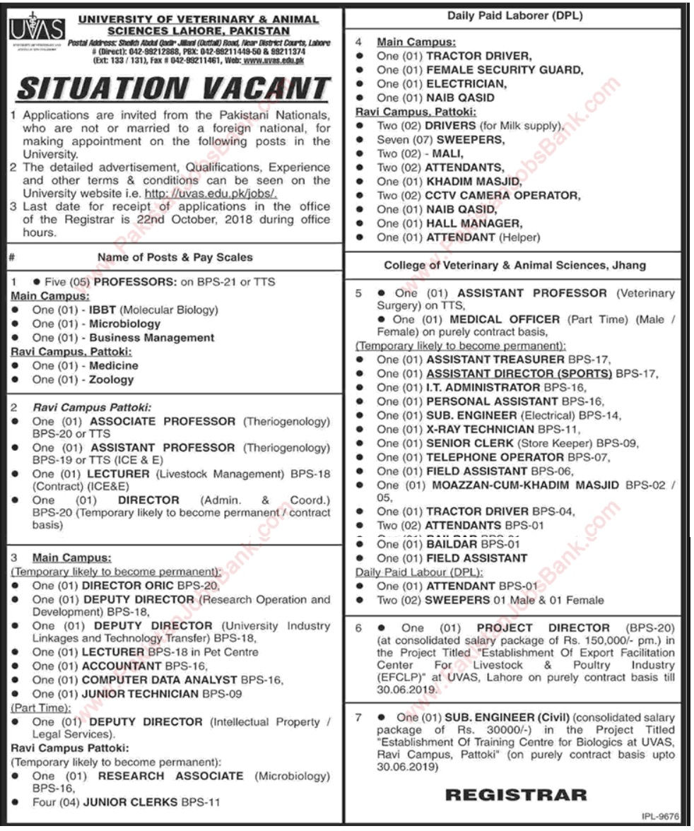 Jobs in University of Veterinary & Animal Science, Lahore 2018