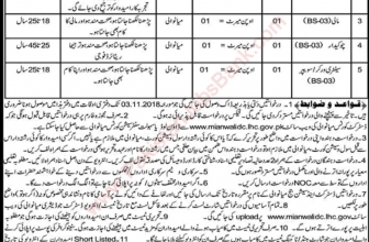 District and Session Court Mianwali Latest Jobs 2019