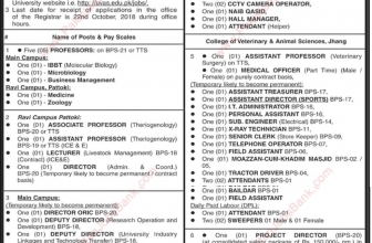Jobs in University of Veterinary & Animal Science, Lahore 2019
